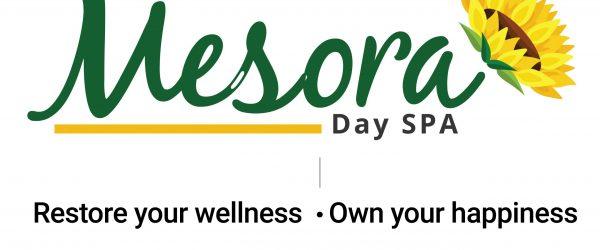 Updated Mesora Logo-02